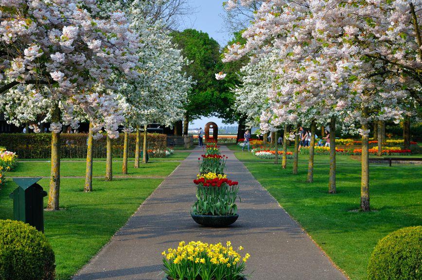Топ-5 самых красивых парков мира