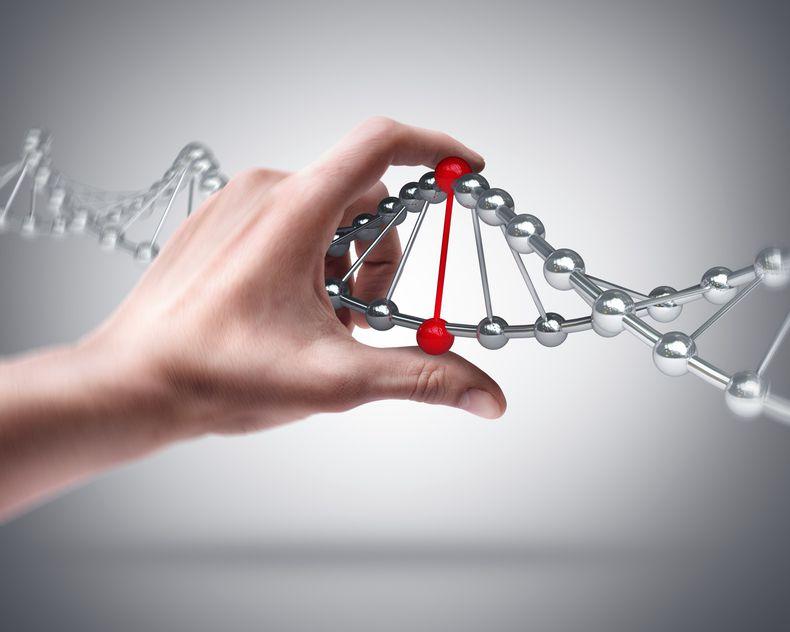 Анализ ДНК - почем, где и зачем