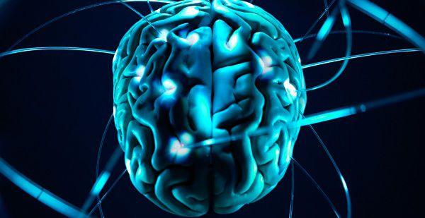 10 причин восхититься мозгом