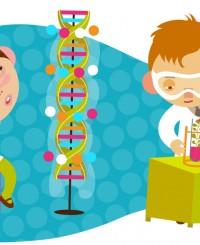 Что показывает анализ ДНК - возможности и особенности организма