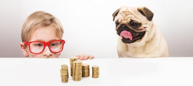 Обучение детей финансовой грамотности по возрастам: игры для подростков 12-14 лет
