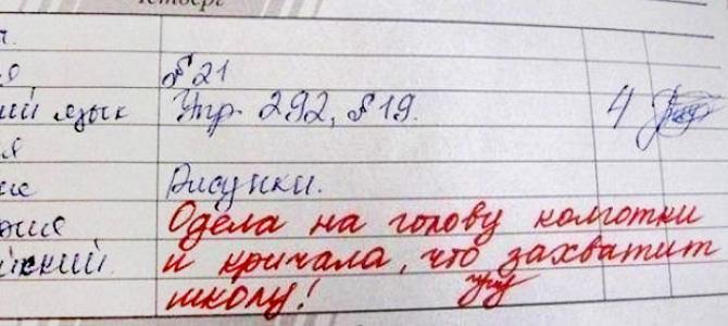 Потрясающе смешные записи в школьных дневниках