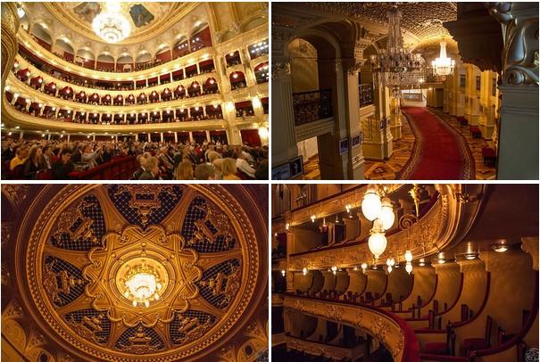 Экскурсия в Национальную оперу Украины + опера «Риголетто»