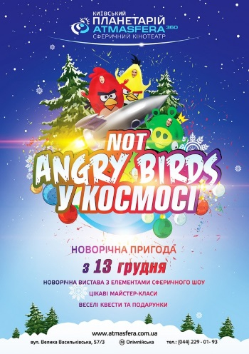 Новогоднее представление «Not Angry birds в Космосе»