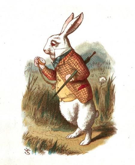 392x480xwhite-rabbit-392x480.jpg.pagespeed.ic.9EQdjXZCcR_xZj1rSs5t