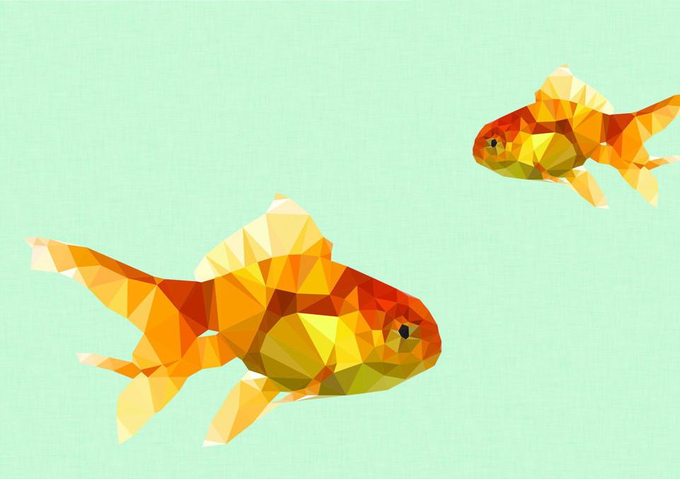 Коуч-сказка: Простая рыбка или история о любви к жизни