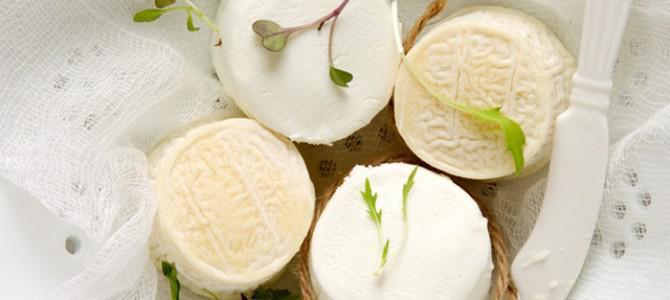 12 сортов козьего сыра, которые стоит попробовать