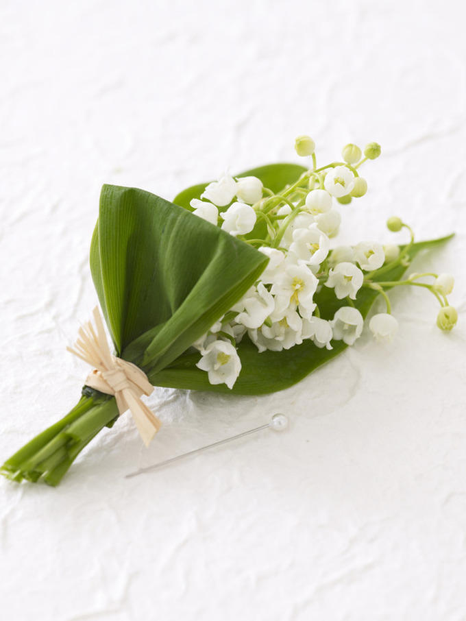 Цветок счастья в День Королевы