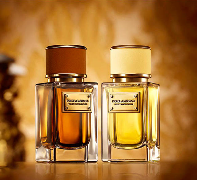 dolce-and-gabbana-velvet-fragrance-collection1