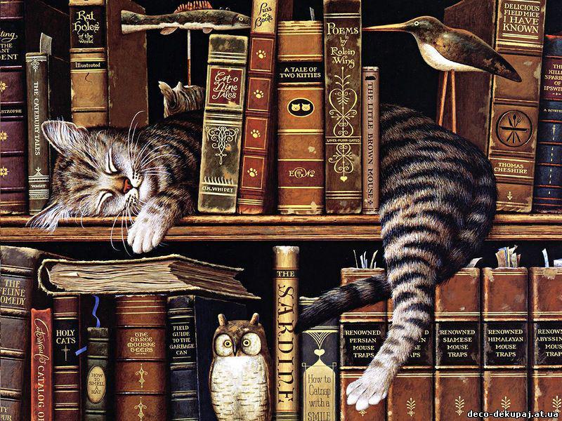 5 книг о животных, которые делают мир добрее