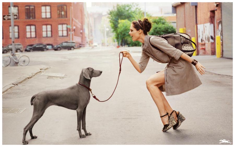 8 способов превратить прогулку с собакой в эффективную тренировку