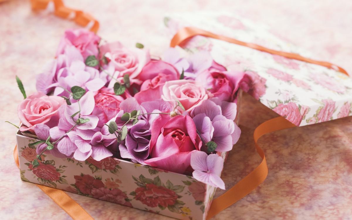 8 идей для подарков ко Дню учителя
