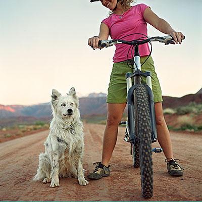 cycling-dog-400x400