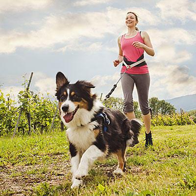 dog-running-400x400