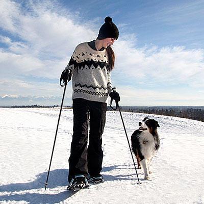 skiing-dog-400x400 (1)