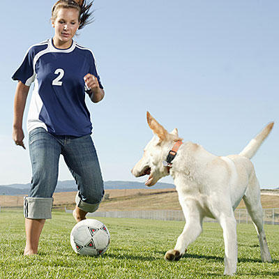 soccer-dog-400x400