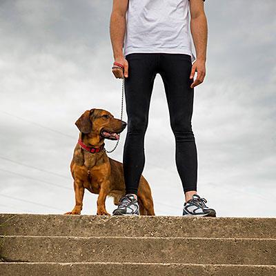 stairs-running-dog-400x400