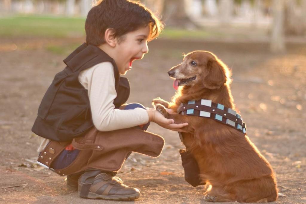 151125-kid-with-dog-yh-1230p_a1d5c6f352b67e37690c51559fbcc4cc.nbcnews-fp-1200-800