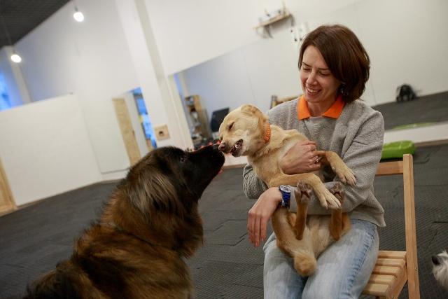 Украина ветеринар кинолог учиться разделяю Ваше