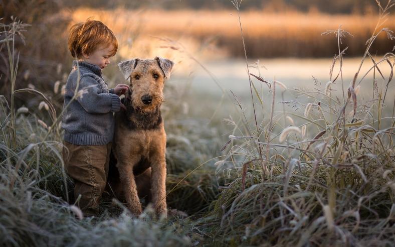 Дети и домашние питомцы: Какая польза от Шарика