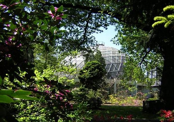 Ботанический сад имени академика Александра Фомина6