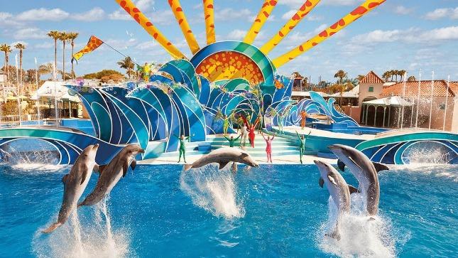 Blue-Horizons-Dolphin-show-finale-SeaWorld-Orlando_1_1024x1024