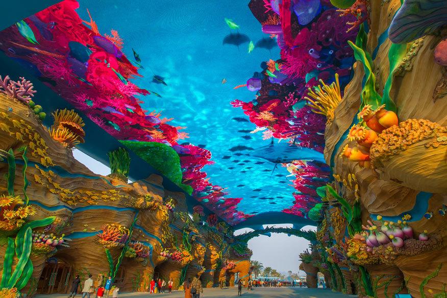 aquarium-49e55bae24e68629