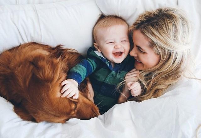 Personas-prefieren-perros-que-bebés-entenderá-8