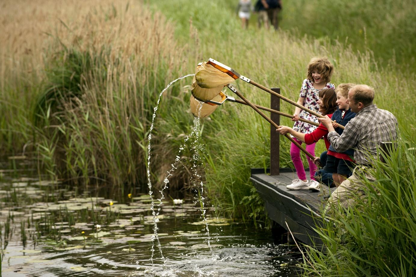 Развлечения на свежем воздухе: Куда пойти с детьми на выходных и не только