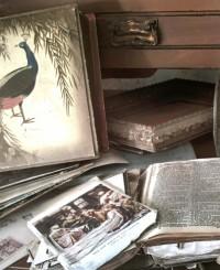 Осознанное потребление: Где в Киеве подарить вещам и книгам вторую жизнь