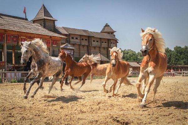 кони киевская русь