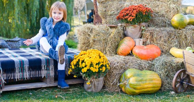 Куда сходить с ребенком в Киеве 14, 15 и 16 октября