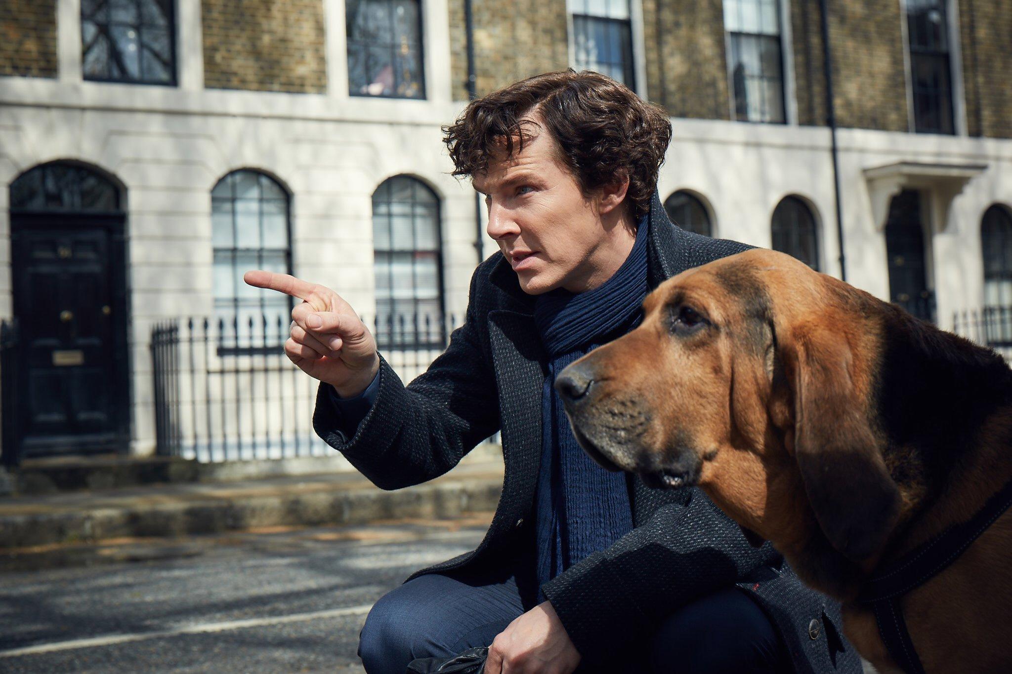 12 новых и возвращающихся сериалов, которые мы будем смотреть этой зимой