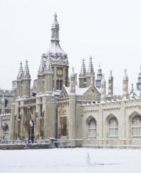 Работа ждет: 150 лучших университетов мира, выпускающих ценные кадры