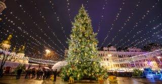 CityGuide: 7 новогодних уличных фестивалей в Киеве