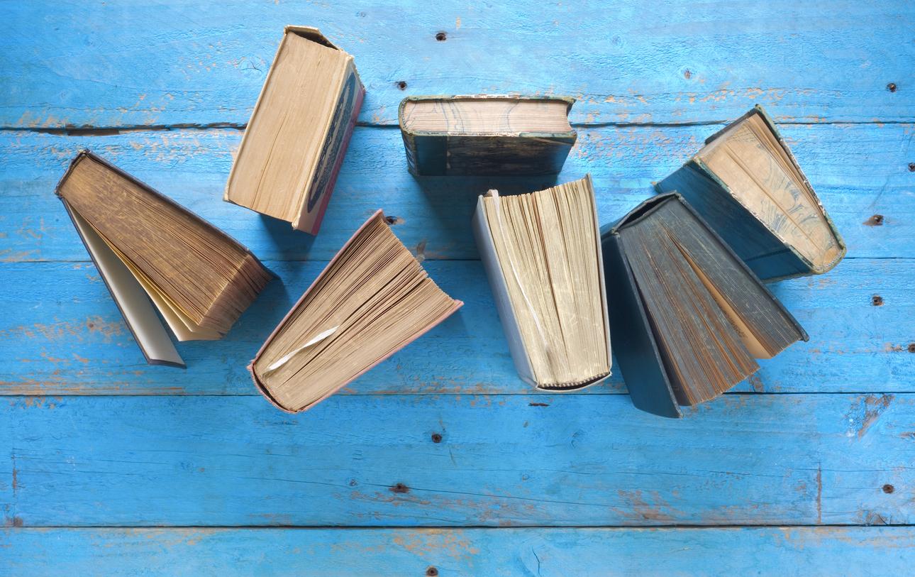 100 самых читаемых книг в 2016 году