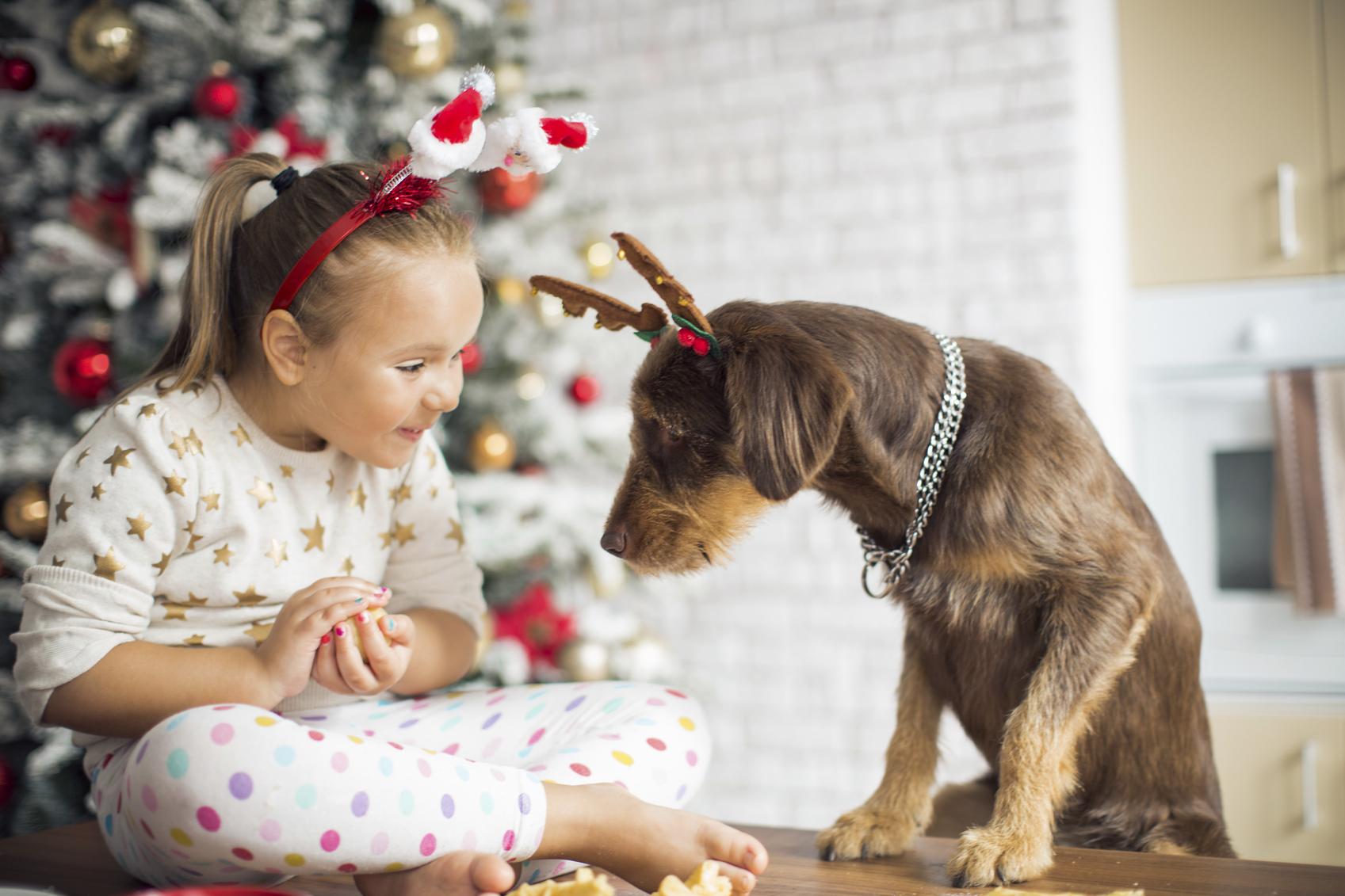 Праздник в деталях: 4 героини о семейных традициях празднования Нового года и Рождества