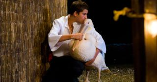 10 фильмов о гармонии и дружбе с природой для всей семьи