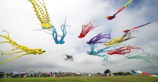 Spring Fest: 14 весенних фестивалей Украины, которые стоит посетить всей семьей