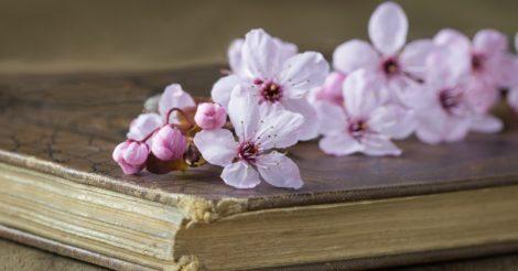 7 книг, о которых все говорят, а вы их еще не читали