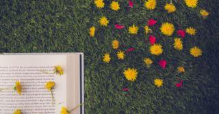 """Книжный Арсенал """"по-взрослому"""": 10 новинок для пополнения вашей библиотеки"""