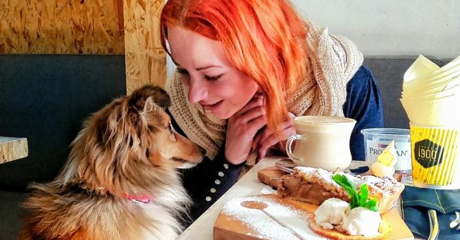 Куда пускают с котом и собакой: 30 pet-friendly мест Киева