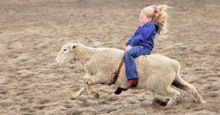 Поставь на паузу: 6 способов научить импульсивного ребенка успокаиваться