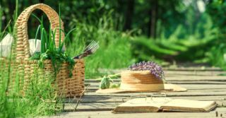 Места знать надо: 8 точек Киева для пикников