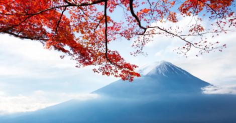 """""""Осенняя прозрачность"""": 7 причин посетить Японию в ноябре"""