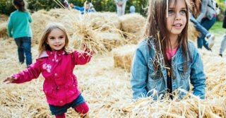 Куда пойти на выходных с детьми в Киеве 23 и 24 сентября