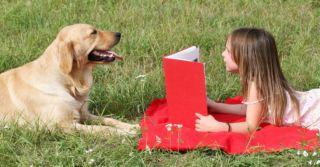 7 интерактивных детских книг, которые невозможно не купить