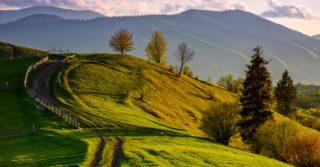 Карпатські канікули з дітьми: Косів, Коломия та Шешори