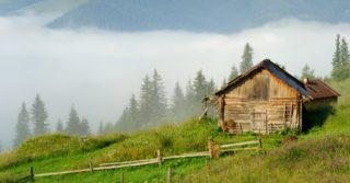 Карпатські канікули з дітьми: Кваси, Криворівня та Красник