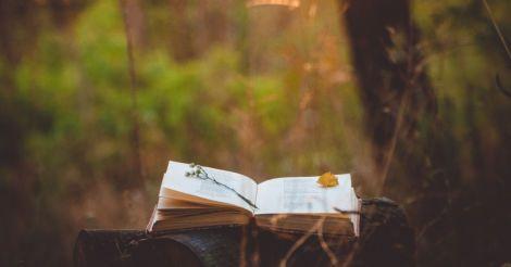 Amore mio: 10 книг из Италии от украинских издательств